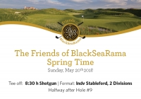 Upcoming tournament: Friends of BlackSeaRama Spring Time on May, 20 th